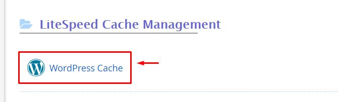 Membersihkan Cache LiteSpeed WordPress Cache4 - Panduan Lengkap Setting LiteSpeed WordPress Cache