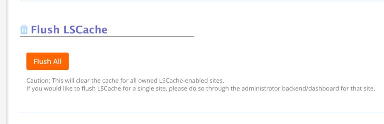 Membersihkan Cache LiteSpeed WordPress Cache5 - Panduan Lengkap Setting LiteSpeed WordPress Cache